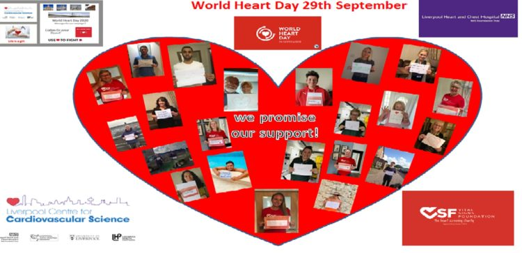 VSF Celebrates World Heart Day